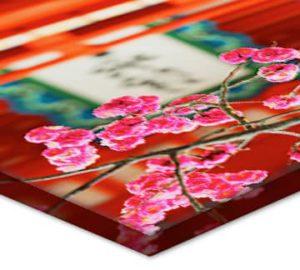 flatbed-Acrylic-08
